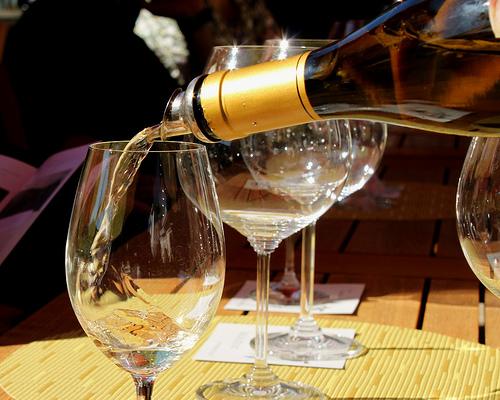 Chardonnay photo
